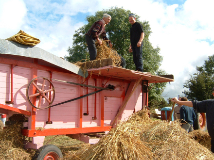 Heritage Day September 2003, Johnny Delaney's tried and trusted threshing machine comes out of retirement for a threshing demonstration. John Conneally, Knockanara and Jim Finnegan ,Liskea cutting the bands on the sheaves
